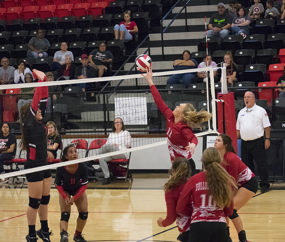 Bulldogettes lose to Lady Wolves