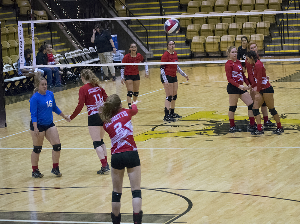 Bulldogettes fall in double header