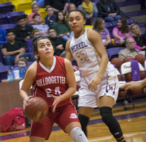 Bulldogettes drop district game to Lady Badgers